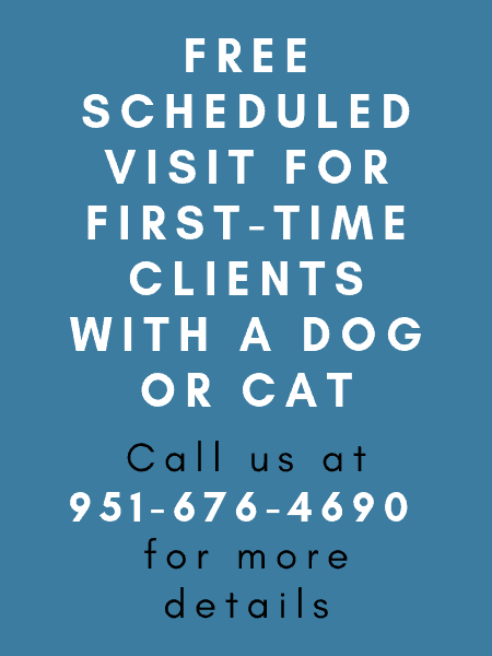 Free scheduled visit for first-time clients